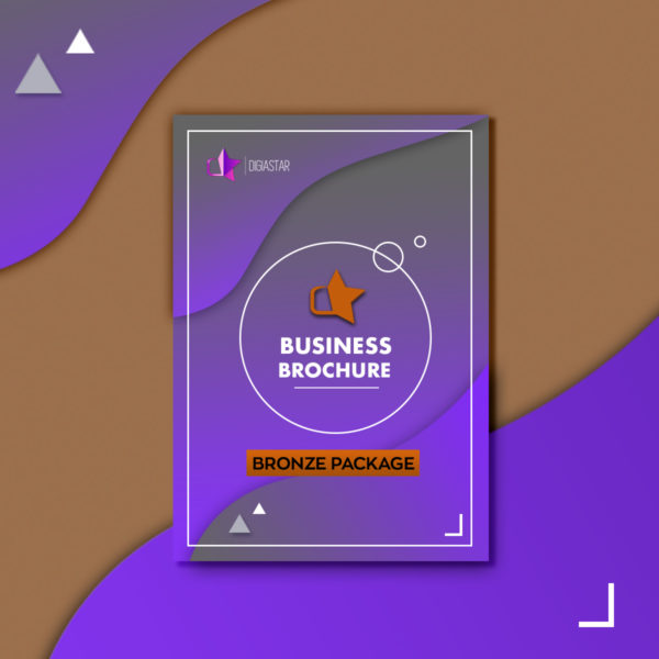 Business Brochure Επιχειρηματικη Μπροσούρα επιχειρησης Graphic Design Digiastar Bronze πακέτο