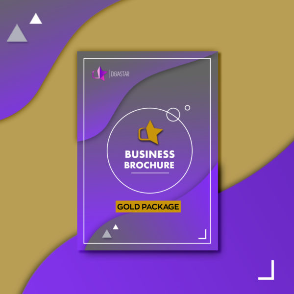Business Brochure Επιχειρηματικη Μπροσούρα επιχειρησης Graphic Design Digiastar Gold πακέτο