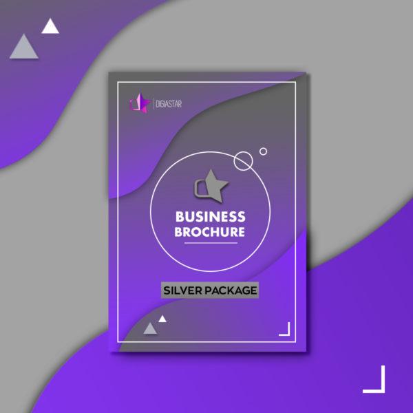 Business Brochure Επιχειρηματικη Μπροσούρα επιχειρησης Graphic Design Digiastar Silver πακέτο